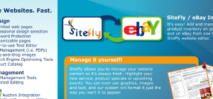 SiteFly Brochure Inside